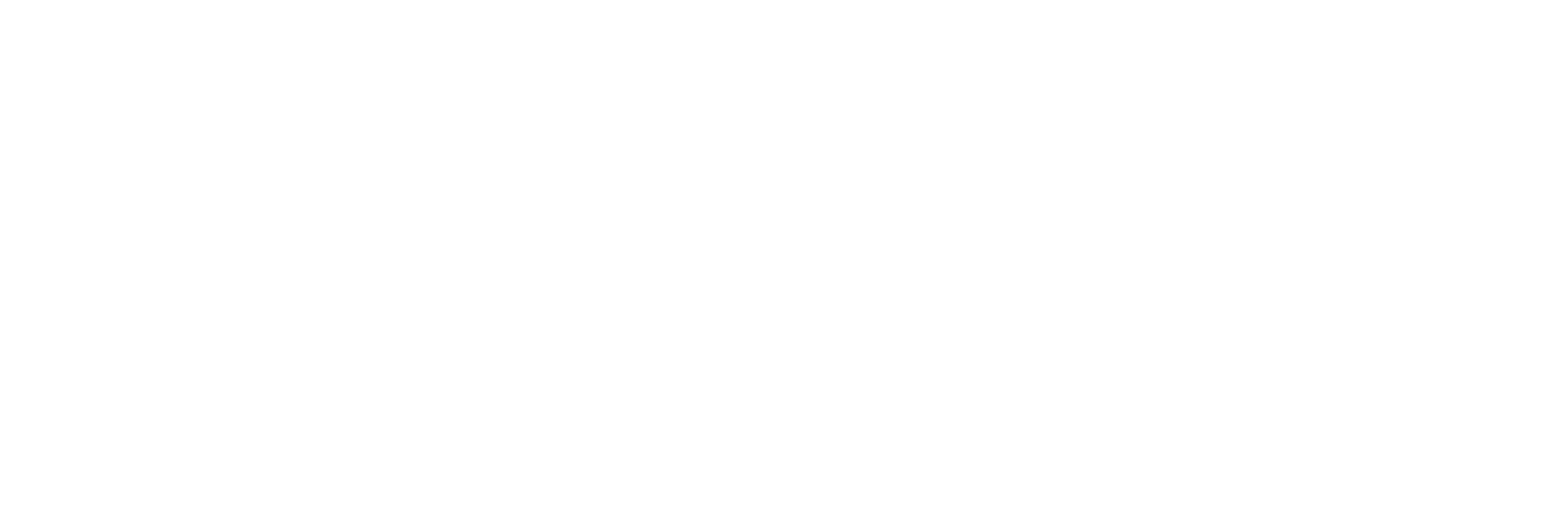 BSC_logo_white_one_color